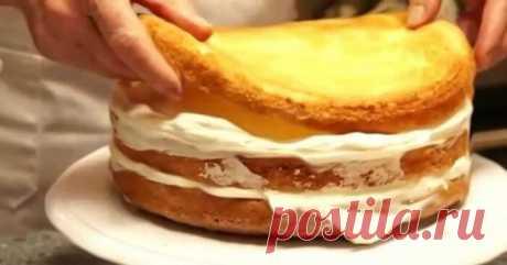 Рецепты приготовления бисквита + вкуснейшие ароматные пропитки для бисквита - Жизнь планеты
