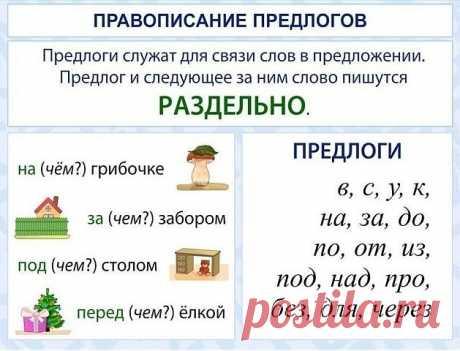 Повторяем правила русского языка