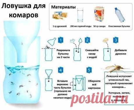 Простой рецепт натуральной самодельной ловушки для комаров. Скоро пригодится