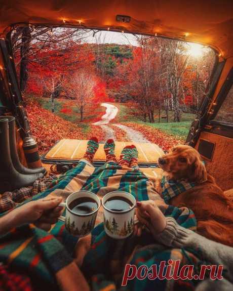 Хочу такую осень! 🍁