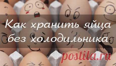 Леди Красота | Как хранить яйца в домашних условиях Яйца представляют собой ценный продукт, который обеспечивает вас необходимыми микроэлементами. Яйца можно употреблять практически в любом виде, они являются ингредиентом многих любимых блюд…