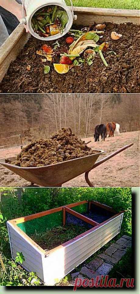 Самые доступные органические удобрения для дачи | 6 соток