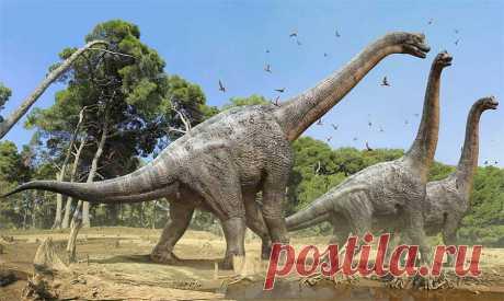 Какой самый большой динозавр в мире: фото и описание