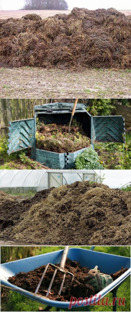 We fertilize a kitchen garden manure — Bashagroplast
