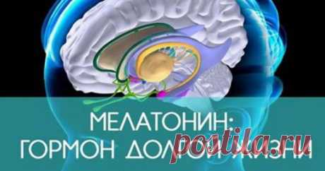 Мелатонин — причина долголетия. Способ поднять его уровень в организме | Всё для Тебя  Что делать, чтобы увеличить выработку мелатонина? Конечно, вы слышали о гормоне сна — мелатонине. Его также называют гормоном жизни и долголетия. Мелатонин не только производится в организме, он также поступает из некоторых продуктов или его можно вводить в организм в виде лекарств и добавок. Как производится мелатонин? Мелатонин продуцируется эпифизом (шишковидная железа). Под действием...
