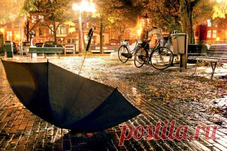 Осень — время мечтать