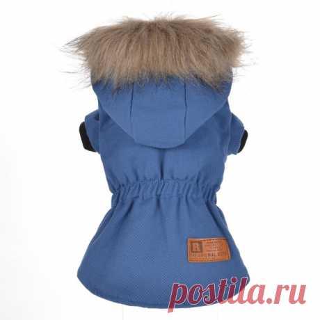 Новые зимние пальто собаки Товары для собак одноцветное Пальто и пуховики Pet Куртки Щенок Одежда поставки Толстовки собака теплая одежда купить на AliExpress