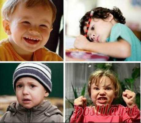 Темперамент Вашего ребенка | ЛЮБОВЬ ПРУСИК | Яндекс Дзен