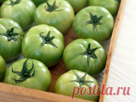 Чтоб помидоры лежали дольше и лучше | Идеи для дома и окружения | Яндекс Дзен