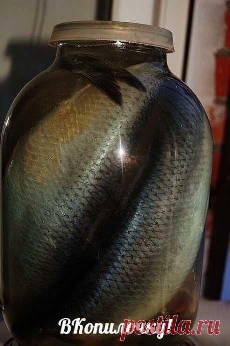 Потрясающая рыбка получается! Хочется еще, и еще... Рекомендую!   Ингредиенты:   1 кг скумбрии ИЛИ селедки  0,5 литра воды  2 столовые ложки соли  1 столовая ложка сахара  Лавровый лист и черный перец горошком