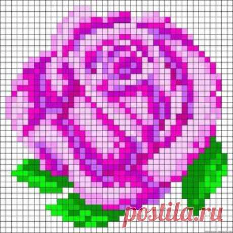 6CEW4epuNn4.jpg (604×604)