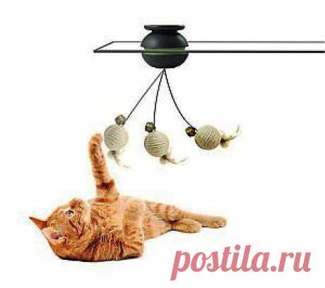 Живая игрушка для кошки