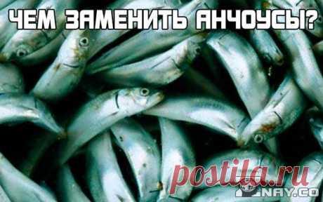 Чем можно заменить анчоусы в рецепте?  Анчоусы – это маленькие рыбки из семейства сельдевых, потому им на замену великолепно подойдет любая рыба из этих же рядов. Шпроты, соленая килька, та же обычная селедка, например. Некоторые люди заменяют сайрой. Как вариант – можно отталкиваться от вкусового сочетания.