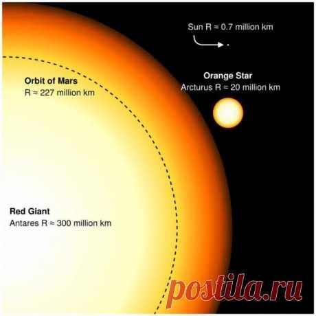 Почему у звезд разные размеры? | Наука и жизнь