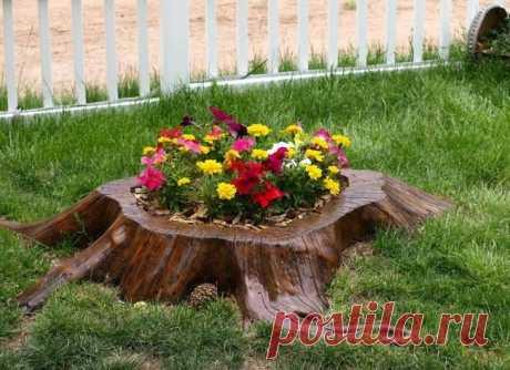 Идеи использования пня в саду
