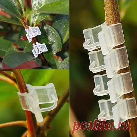 50/100 шт Пластиковые зажимы для поддержки растений томатные баклажаны растения прививка зажим фиксированная теплица овощи садовый орнамент Полки для растений    АлиЭкспресс
