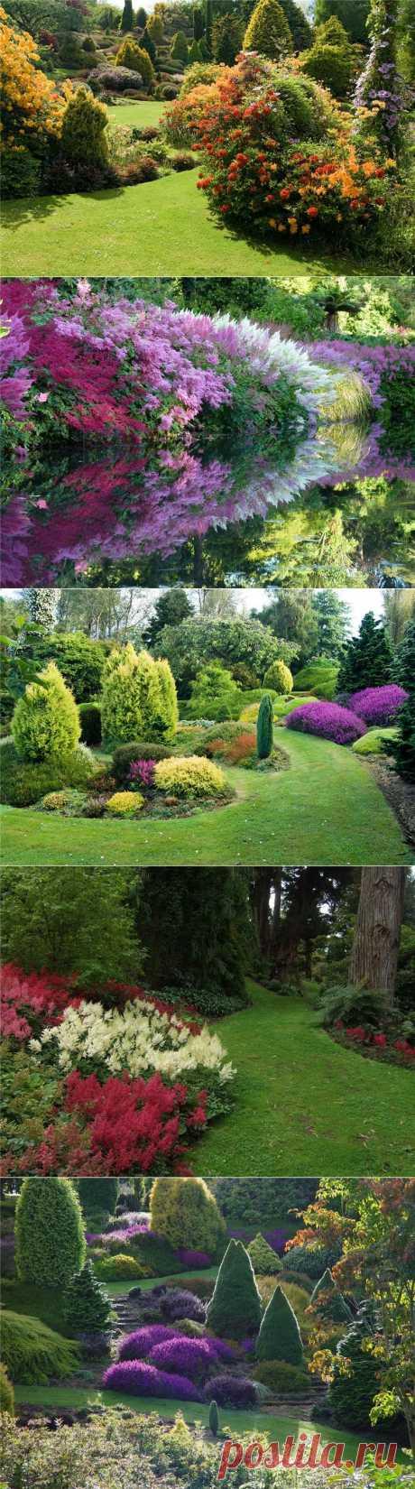 Сад долины реки Клена .