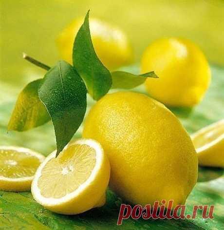 Как избавиться от ангины за несколько часов Все очень просто: нарезаете лимон, засыпаете его коричневым сахаром или еще лучше медом (худшее, но можно – обычным рафиниров.) и съедаете, тщательно прожевывая его, вместе со шкуркой. Если ангина у вас только начинается (1-й или 2-ой день), то, как правило, одного раза вполне хватает, чтобы она прошла бесследно.