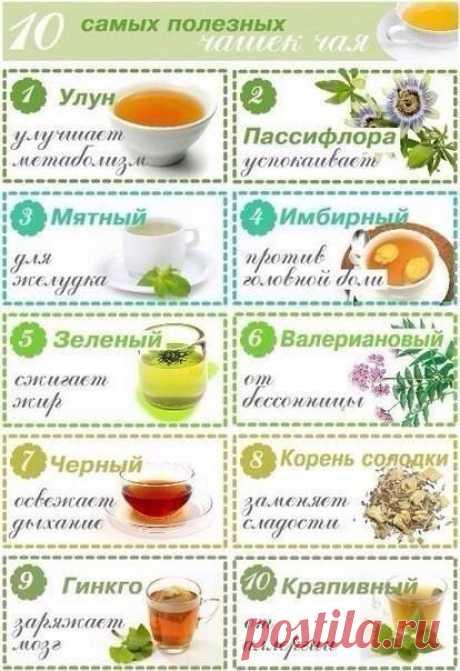 10 самых полезных чашек чая
