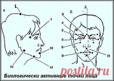 Биологически активные точки на голове — ваша скорая помощь ! Японский метод «шиатсу» — воздействие на точку надавливанием большого указательного пальца руки. Он может быть использован в сочетании с вращательными движениями в области выбранной точки — по часовой и против часовой стрелки. Правила. 1. Вы нашли необходимую точку для устранения тех явлений, которые вас беспокоят. Сначала произведите легкое надавливание (в течение 30 сек.), — этим вы улучшите местное кровообращение. 2. После этого