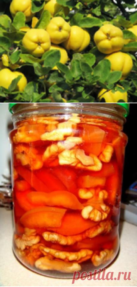 Изумительное варенье из айвы (рецепты)