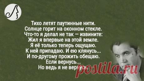 """""""...помоги мне в себя поверить,стань слабее"""" глубокие стихотворения Роберта Рождественского   Личности   Яндекс Дзен"""