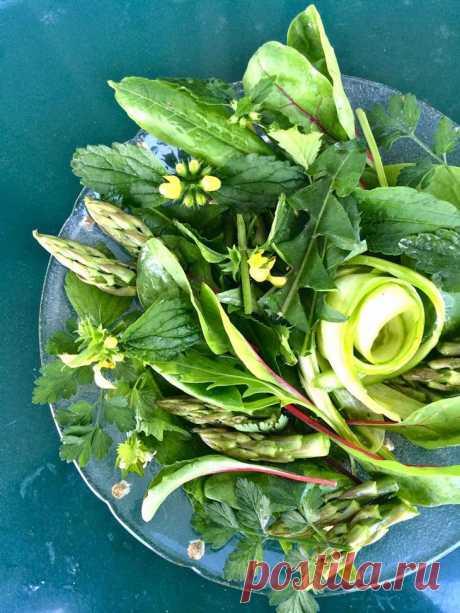 Съедобные сорняки—кладезь витаминов....