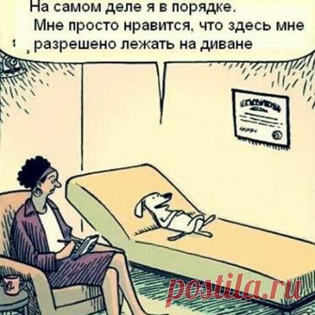 Немного юмора)