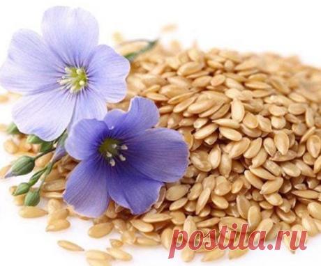 Простой напиток из семян льна поможет Вам похудеть на 10 кг за 1 месяц и избавиться от целлюлита | Еда и здоровье | Яндекс Дзен