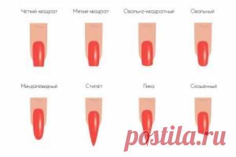 Las formas de las uñas y su nombre de la foto