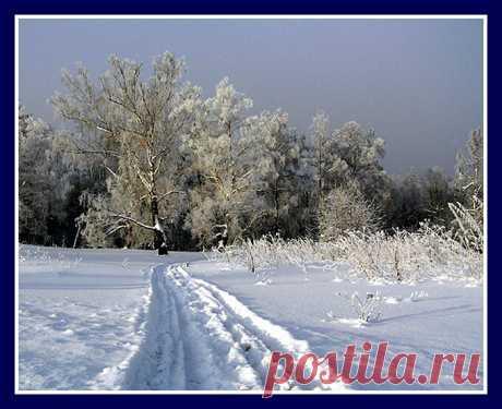 3 января-Пётр Полукорм. Ни в коем случае не желайте сегодня добра и здоровья!!! | Приметы, православие и язычество | Яндекс Дзен