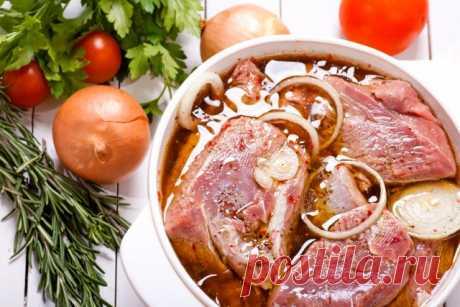 Маринование мяса для шашлыка – лучшие рецепты | Статьи (Огород.ru)