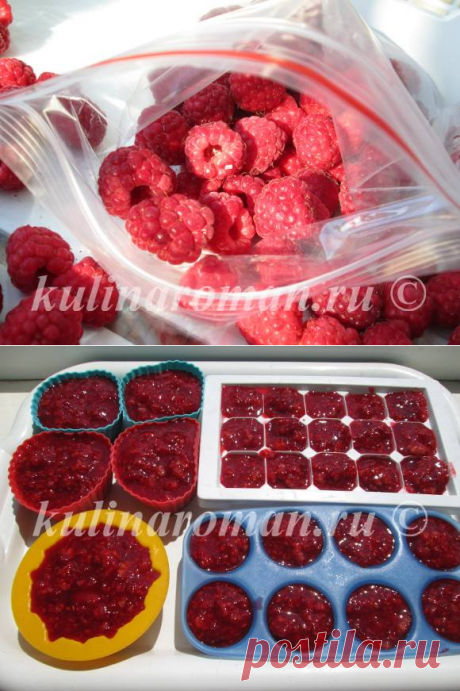 Raspberry for fresh winter — the recipe without cooking | Tasty Recipes