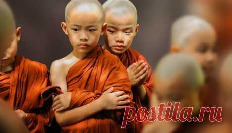 Основные правила мудрых людей 9. У мудрого человека всегда под рукой есть все необходимое для важных дел. Мудрый человек старается просчитать ситуацию наперед.