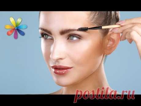 Correction of the person eyebrows! Secrets from Elenochki Melnik – awaking All to dobra. Release 854 of 02.08.16