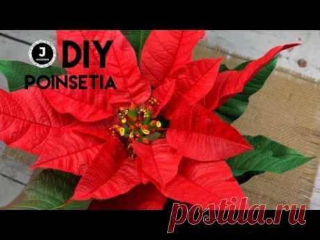 DIY. Poinsetia. How to make poinsetia. МК Пуансетия из фома. Простой способ создания серединки.