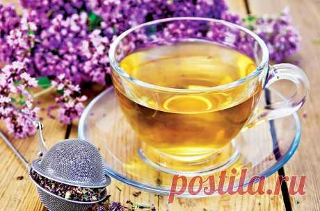 Чай из душицы, который поможет дожить до глубокой старости