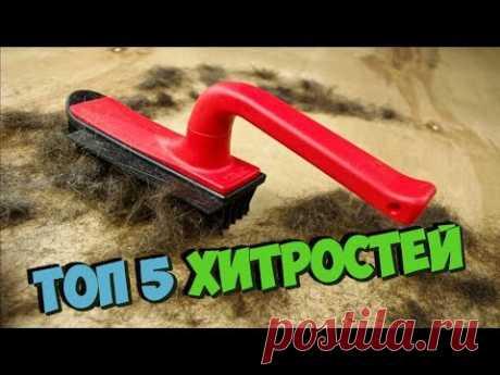 Как быстро избавиться от шерсти! ТОП-5 хитростей, чтобы молниеносно убрать всю шерсть из дома - YouTube