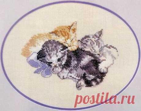 Спящие котята / Понимание бизнеса