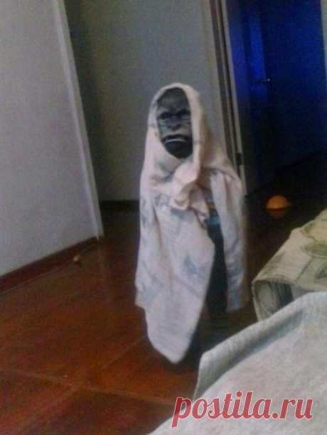 Бабушка купила маску внуку... Тесть бросил пить...