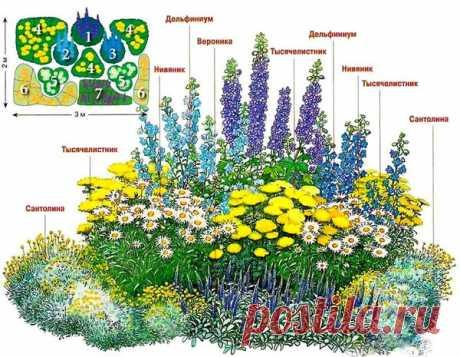 Как выращивать растения без трат | Школа Цветоводства | Яндекс Дзен