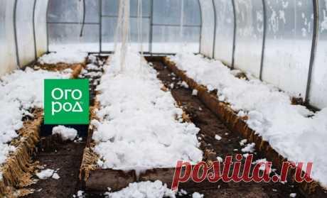 Закидывать снег в теплицу – польза или пустая трата времени? | Дела огородные (Огород.ru)