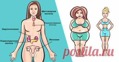 Есть 6 гормонов, которые мешают вам похудеть. Вот что делать с каждым из них Если вы набираете вес, несмотря на все принятые вами меры, проверьте свой гормональный фон,пишет. Может все дело именно в нем?! Эта проблема может замедлить ваш общий метаболизм. Также проверьте, есть ли у вас дисбаланс в уровнях эстрогена и тестостерона. Из-за этого тело может хранить глюкозу в виде жира.