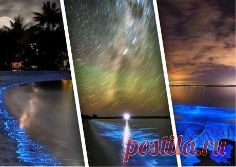 🎁 Светящаяся вода острова Ваадху. Расскажу в чем там дело | 🎁 СУПЕР ПОДАРОК 🎁 | Яндекс Дзен