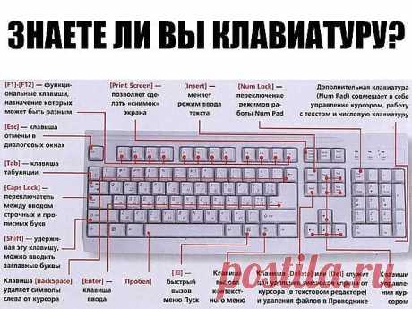 """¿SI SABÉIS EL TECLADO EN SVOM EL ORDENADOR?\u000a\u000aF1 - Llama \""""la información\"""" Windows o la ventana de la ayuda del programa activo. En Microsoft Word la combinación de las teclas Shift+F1 muestra el formateo del texto;\u000a\u000aF2 - Da otro nombre al objeto distinguido sobre el escritorio o en la ventana del conductor;\u000a\u000aF3 - Abre la ventana de la búsqueda del fichero o la carpeta sobre el escritorio y en el conductor. La combinación de las teclas Shift+F3 se usa a menudo para la búsqueda en dirección opuesta;\u000a\u000aF4 - Abre la lista que cae, por ejemplo, la lista..."""