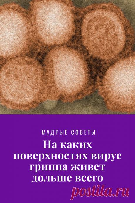 На каких поверхностях вирус гриппа живет дольше всего