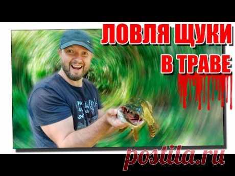 Ловля щуки в траве на спиннинг! Или как не сдохнуть на рыбалке?!!!