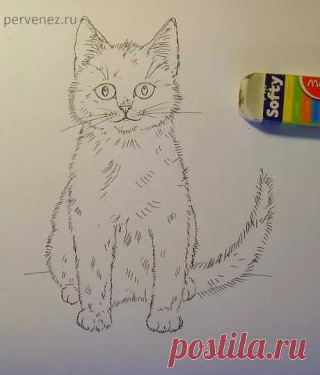 «Как нарисовать с ребенком кота» — карточка пользователя slavashishaev в Яндекс.Коллекциях