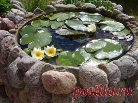 Pond from a big tire