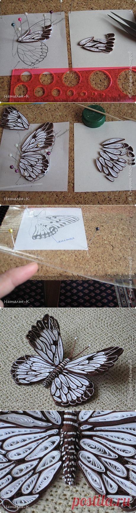 Бабочки в технике квиллинг: мастер-класс — Сделай сам, идеи для творчества - DIY Ideas